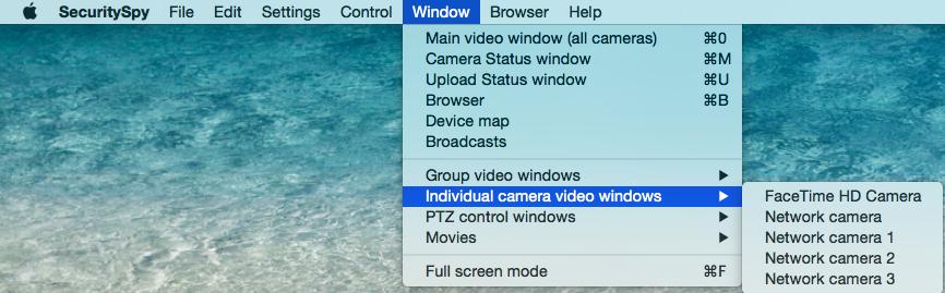 Individual Camera Video Windows