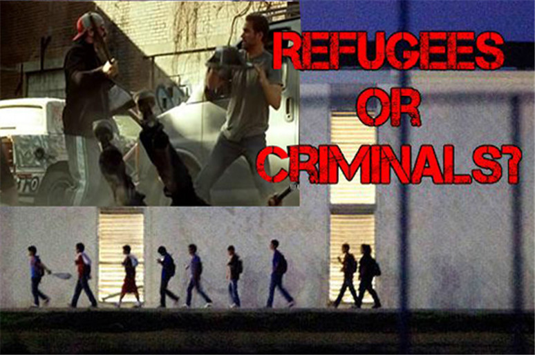 Stop Refugee Crimes