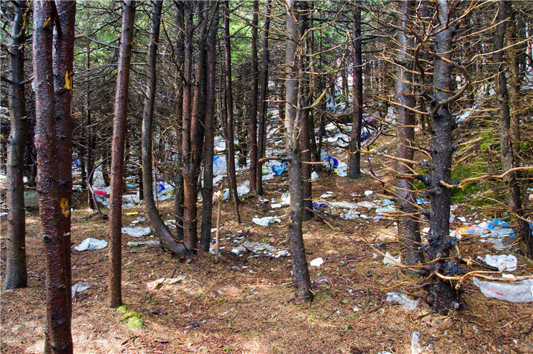 How To Stop Illegal Dumping On My Property Top 5 Ways