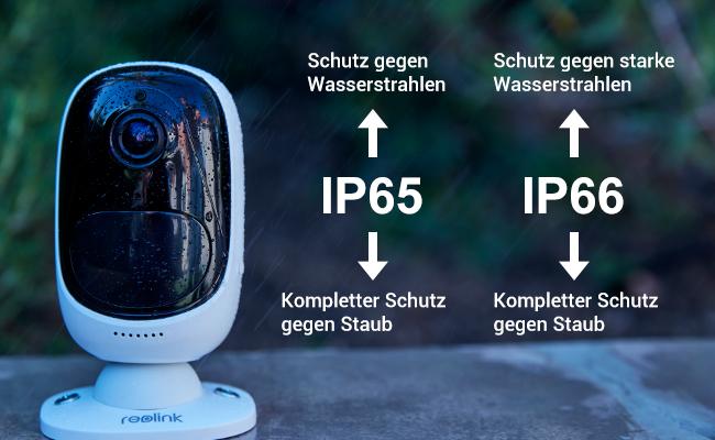 IP6566