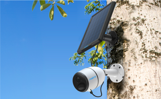 Megapixel Security Cameras